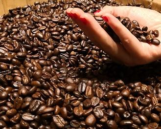 kaffeemaschine_mit_mahlwerk_